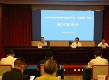 2020年河北省战略性新兴产业领军百强、创新百强企业榜单出炉